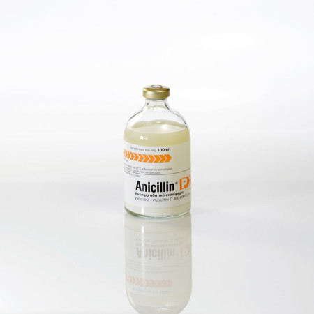 ANICILLIN-100ml
